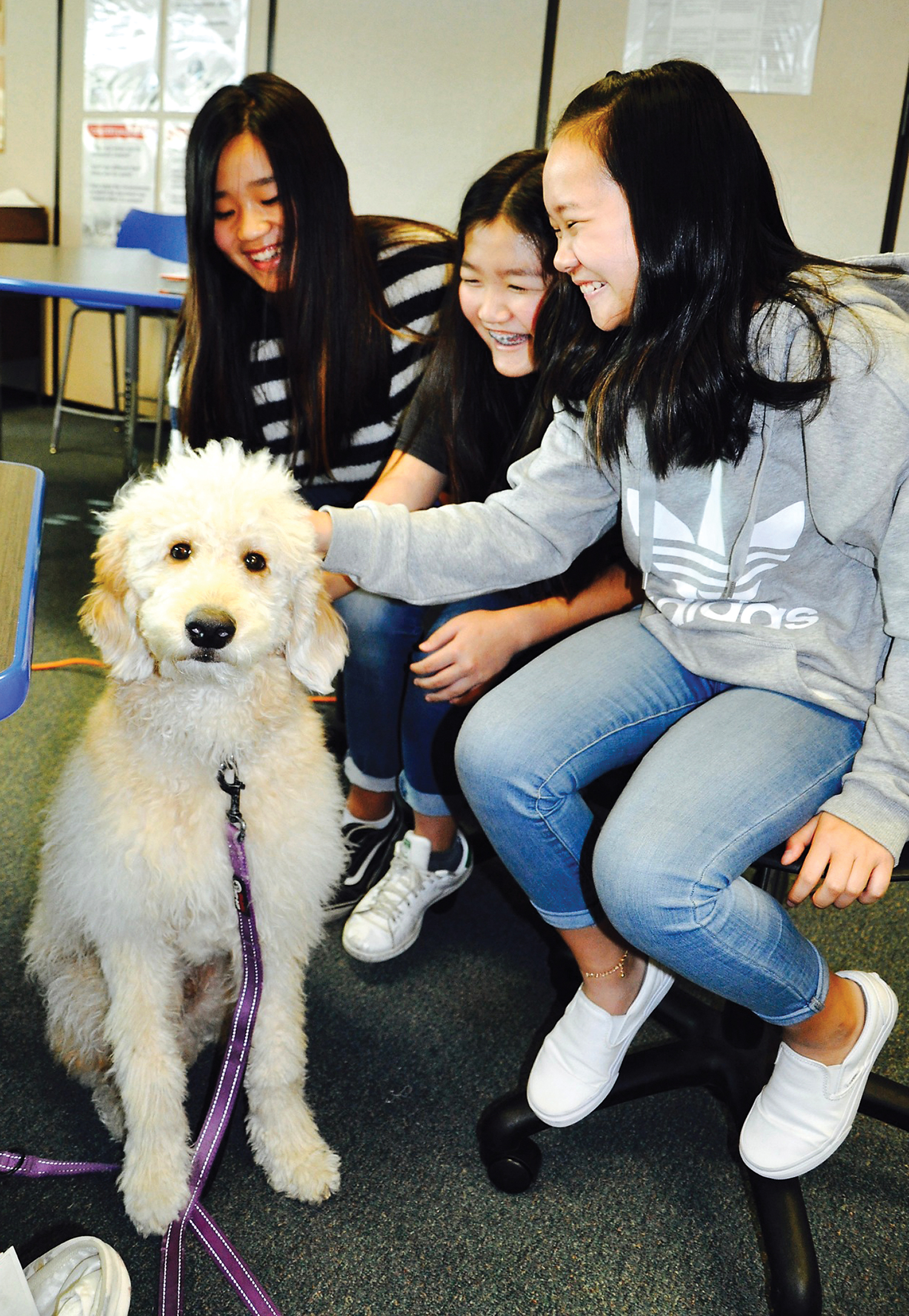 Laker the Goldendoodle puppy is providing comfort and companionship to South Pointe  students.